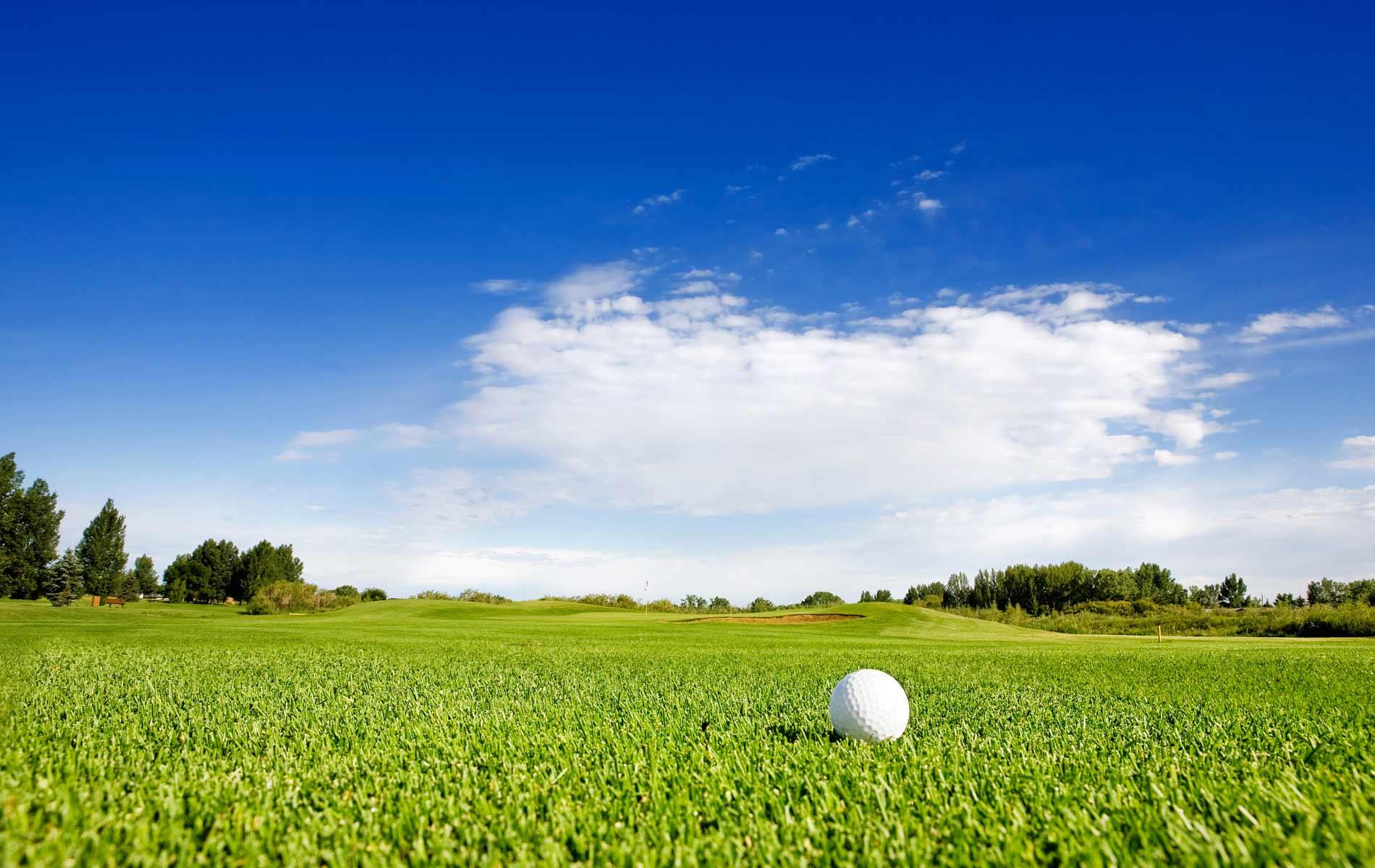 golf_bg